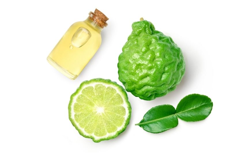 What Does Bergamot Smell Like